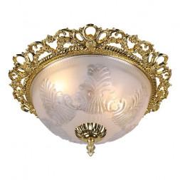 Потолочный светильник Arte Lamp Piatti A8002PL-2GO