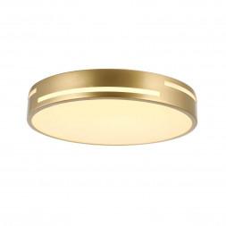 Потолочный светодиодный светильник F-Promo Pall 2745-1C