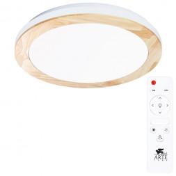 Потолочный светодиодный светильник Arte Lamp Luce A2685PL-72WH