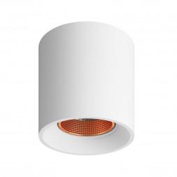 Накладной светильник Denkirs DK3090-WBR